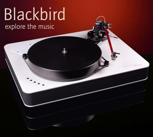 http://www.mmaasmedia.com/images/Feickert/Blackbird.jpg